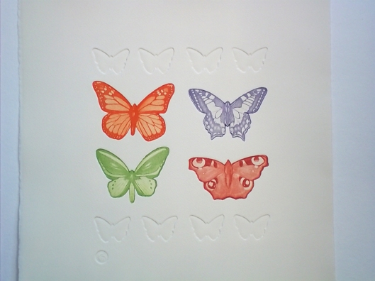 Butterfly Specimens 2